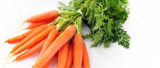 Полезные свойства и противопоказания моркови