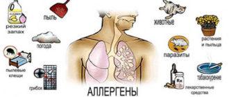 Астма причины возникновения заболевания, симптомы, лечение